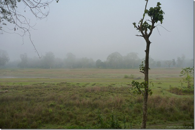 101113_P1020794_Nepal, Chitwan Nationalpark, Unterkunft, Ausblick