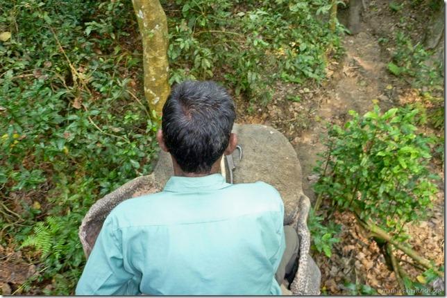 101113_P1020845_Nepal, Chitwan Nationalpark, Dschungel-Elefantensafari, Elefantenführer