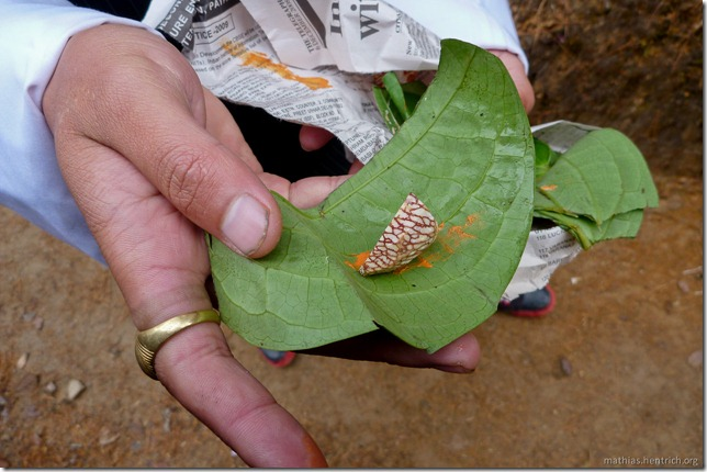 101119_P1030245_Bhutan, Paro, Tigers Nest, Betelnuss-Snack