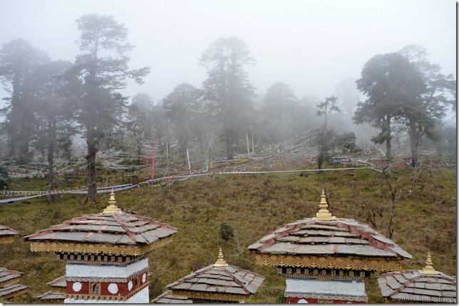 101120_P1030498_Bhutan, , Dochu La 108 stupa, Aussicht in Wald